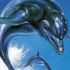 Ecco The Dolphin: Main Theme (Remake)