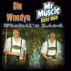 Die Woodys ft Mr Muscle - Fichtl`s Lied (Oktoberfest hardstyle :) remix)
