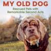 Book celebrates senior dogs