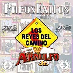 Los Reyes Del Camino y Arnulfo Jr Puros Exitos Vol2 (2016) Dj Tito