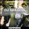 DJ Shadow - Building Steam With A Grain Of Salt (Kommudus Drum & Bass Remix) [SC Version]