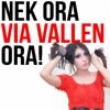Via Vallen - Kimcil Kepolen NDX AKA(OM Sera Live)