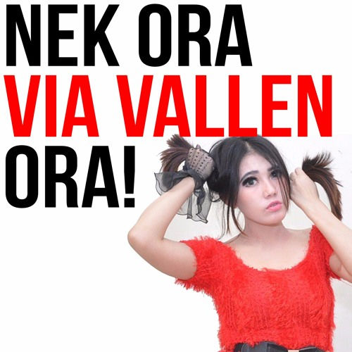 Via Vallen  Kimcil Kepolen NDX AKAOM Sera Live.mp3