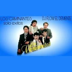 LOS CAMINANTES SOLO EXITOS  ( DJ FLOW EL DEMENTE) 2016