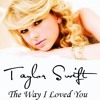 Taylor Swift - The Way I Loved You ( Cover )