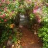 Secret Garden - Songs From A Secret Garden - Gary Cover