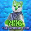 Elle King - America's Sweetheart (NIIC the Singing Dog cover)