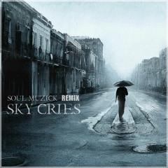 PACMAN*ft - The Exper-T & Wild Christopher - Sky Cries (SouL Muzick Remix)