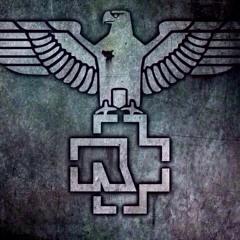 Rammstein- Spiel Mit Mir Instrumental Cover