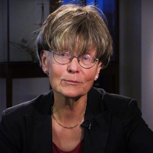 Ulla Gudmundson - Kampen om den indiska nationen