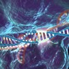 CRISPR and Cas-9 - how gene editing may one day lead to a cure for cancer