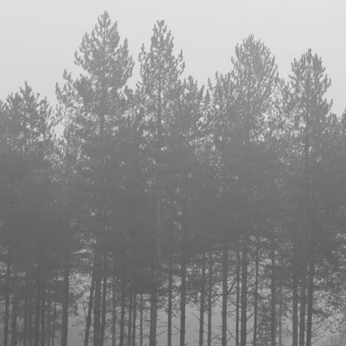The Living Meditations - Let Sadness Through
