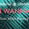 Martin Jensen -  All I Wanna Do  (Tom Miles Bootleg)