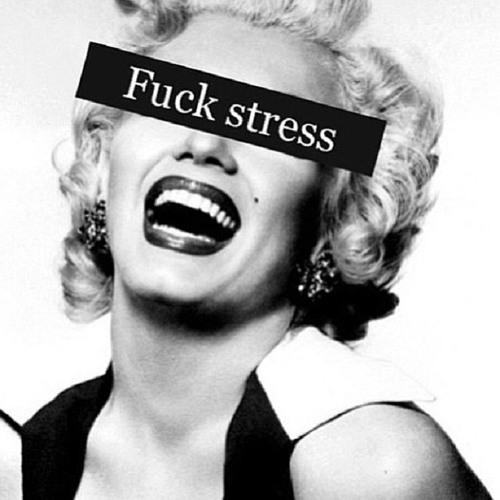 no All Stress house