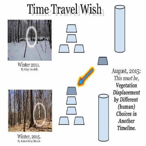 A Note On Vegetation Displacement by Human Choices In Another Timeline