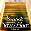 Track 1 Sounds from the Secret Place Volume 6