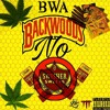 'Backwoods No Swishers' (lil wayne sure thing remix)