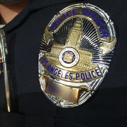 Community Profile - LAPD