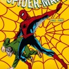 19-Spiderman Rock. Cover . (with you tube video)