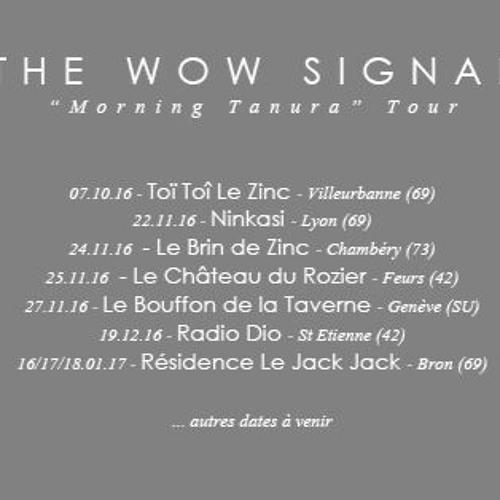 The Wow Signal - Morning Tanura