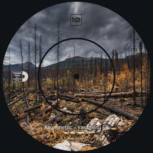 Asymmetric + Limit - Vinyl Junkie [BURELOM05] (112 kbps full demo version)