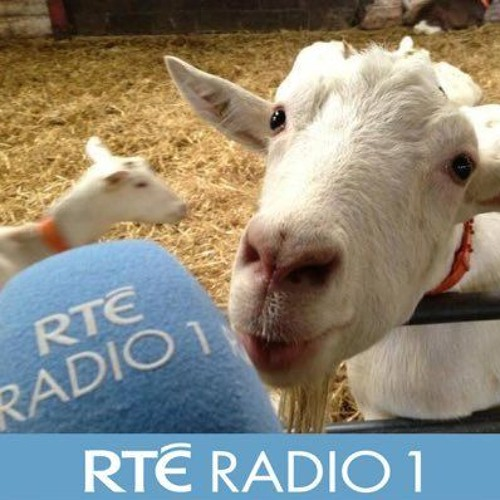 Mini-Features for RTE Radio 1's Countrywide