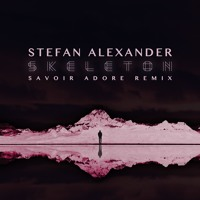 Stefan Alexander - Skeleton (Savoir Adore Remix)