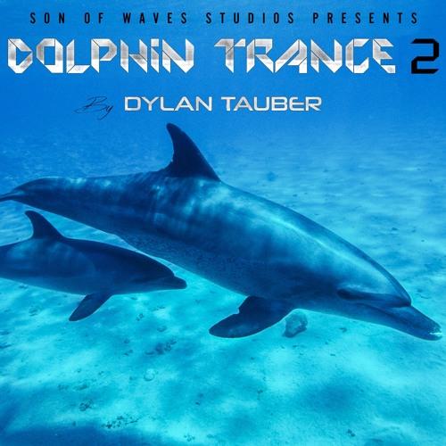 Dolphin Swim Remix (feat. Enlia)