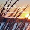 Martin Jensen Feat. Bjornskov - Miracles (Redmoon Remix)