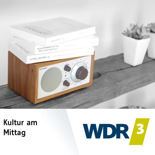 Das Phänomen Musikfestival | WDR 3 Kultur am Mittag  (25.07.2016)