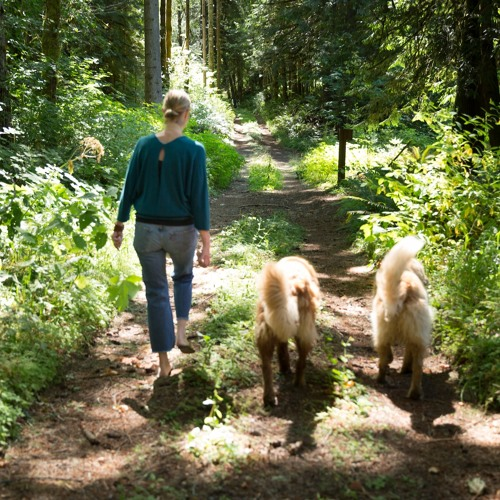 Pilgrim Nature Walk