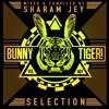 Sharam Jey, Frey–Yo Baby! (Original Mix)