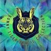 Groove Delight – Brain Cracklin (Original Mix)