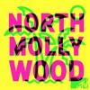 North Mollywood: The Blac Chyna of The Kardashian Wiburys