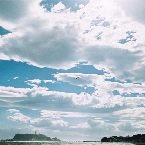 流れるイオタ feat. イシタニタイジュ鍵盤ハーモニカQuartette/ The world is beautiful It's always there