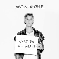 Justin Bieber - What do you mean (xDuhm Remix)