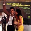 Herb Alpert - What Now My Love (Trumpet)
