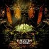 E-Mantra - Ayahuasca ( JaraLuca Remix )