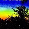 Passenger - All The Little Lights (Cover)