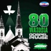 Naija Praise Medley 2(80 Wazobia Gospel Praise)