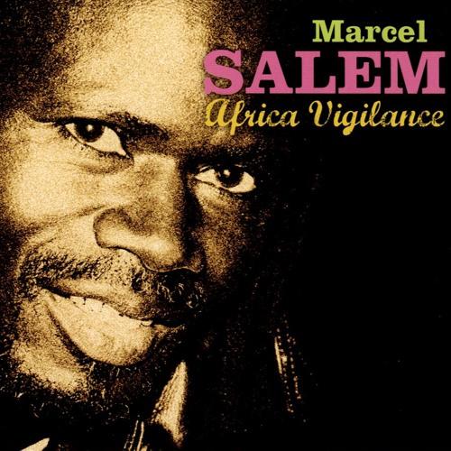 AFRICA VIGILANCE (2008)