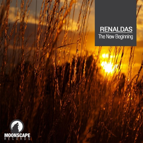 MSR027 : Renaldas - The New Beginning (Original Mix)