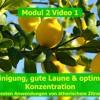 Modul 1 Video 1 Die besten Anwendungen mit ätherischem Zitronenöl