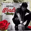 Bryka - Words With Meaning  [Blaqk Sheep Music] 2016