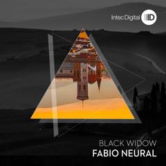 ID115  Fabio Neural - Stop The Rot - Intec copy