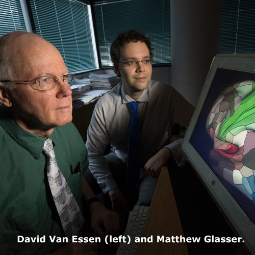 Cerebrum Podcast: The Human Connectome Project with David Van Essen and Matthew Glasser
