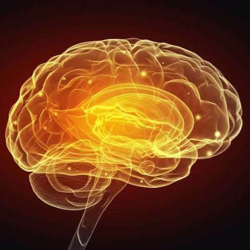 Restoring Brain Health
