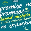 No Skylarkin - Promise No Promises meets Blend Mishkin & Roots Evolution Band