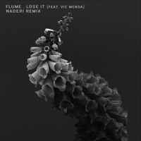 Flume - Lose It ft. Vic Mensa (Naderi Remix)