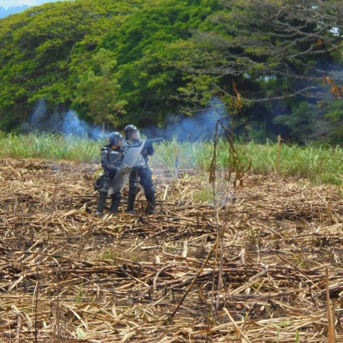 En el 'día de la paz', Policía arreció guerra contra los indígenas del Cauca